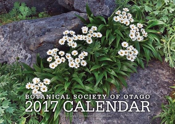 2017_calendar.jpg